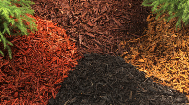 What Type And Color Of Mulch Should I Use For My Landscape Project