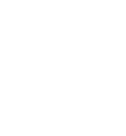 Medium Cool Pictures